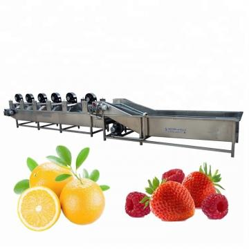 Single Cylinder Bubble Cleaner Vegetable and Fruit Bubble Cleaning Machine Industrial Food Washing Machine