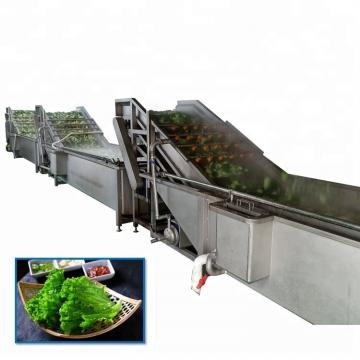 Industrial equipment air bubble food cleaning washing machine line price for fruit and green leaf root vegetable