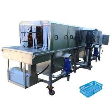 Industrial automatic food fruit vegetable bubble washing processing machine